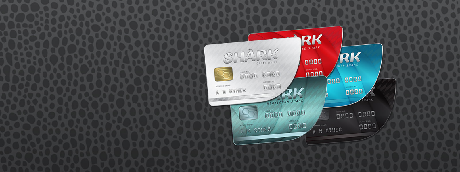 View of multiple shark credit cards